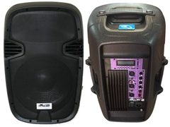 "Bafle GBR 12"" 200 Watts - PL1240"